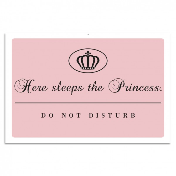 """Here Sleeps The Princess. - Do Not Disturb"" Blechschild"