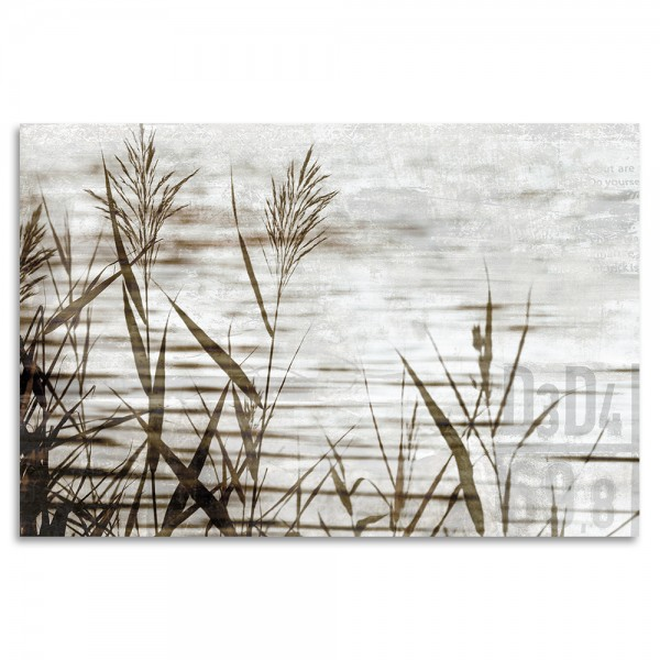 """Long Grass"" Acrylglasbild"